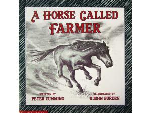 A Horse Called Farmer
