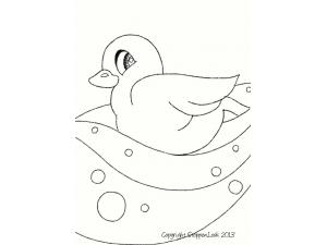 Ducky Duk Duk
