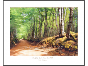 'The Lady Birch'